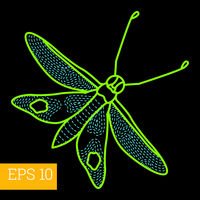 hawk-moth insect outline vector