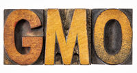 GMO acronym in vintage wood type