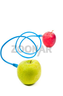 Conceptual poto with apples and wire