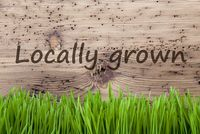 Bright Wooden Background, Gras, Text Locally Groen