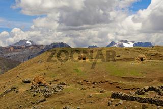 Hütten im Andenhochland
