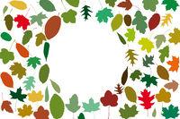 Viele verschiedene Herbstblätter als Kreis