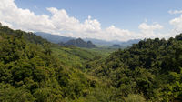 Aerial view of tropical green rain forest landscape