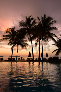 Evening in tropical hotel