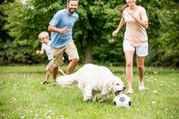 Familie und Kind spielen Fußball
