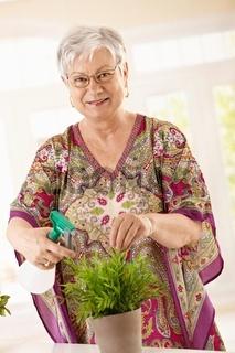 Happy senior woman watering plant