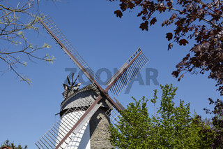 Windmühle Dützen (Minden)