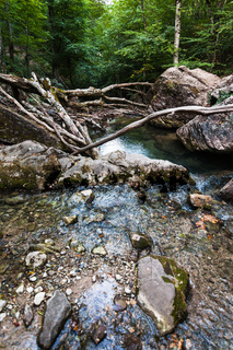 pond because of fallen trees on Ulu-Uzen river