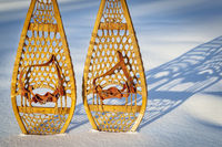 vintage Huron snowshoes abstract