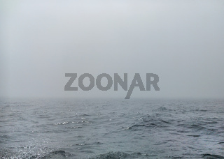 Fog over the Mediterranean Sea