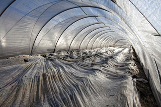 Greenhouse made of foil in March, Wachtberg,Germany