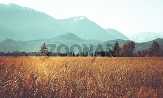 Bayrische, herbstliche Landschaft in warmen Farben.