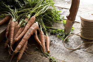 Raw carrots with leaves