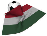fußball und ungarische flagge - 3d illustration