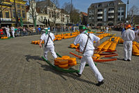 Cheese carriers carrying cheese truckles, cheese market of Alkmaar, Netherlands