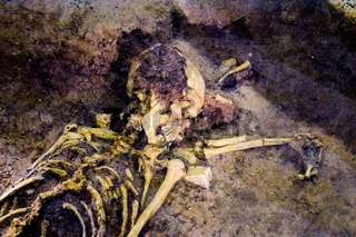 Archaeological find skeleton of human being
