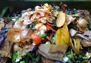 Komposthaufen mit Biomüll