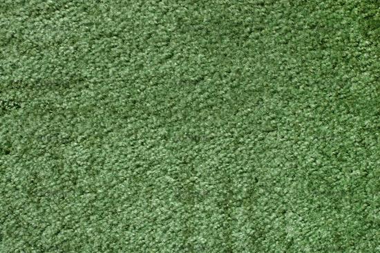 Green Carpet Texture A Green Carpet Texture T Nongzico