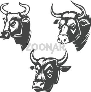 Bull heads emblems isolated on white background. Design element for logo, label, sign, brand mark. Vector illustration.