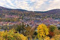 1 BA Heidelberg Stadtansicht im Herbst.jpg