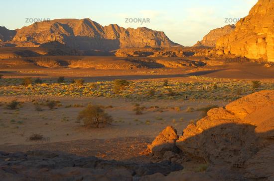 wadi valley in the golden morning sun, Sahara