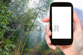 tourist photographswet rainforest in Dazhai