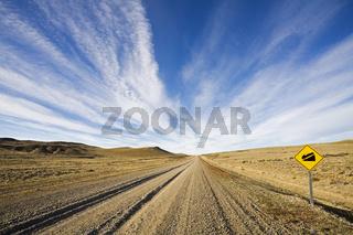 Ruta Nacional 40, Argentinien, Patagonien