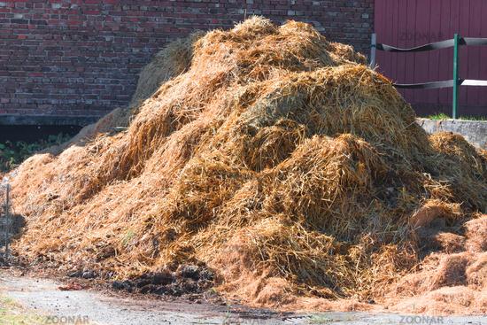 A manure pile on a farm