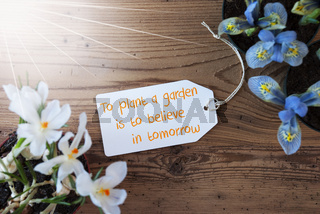 Sunny Flowers, Label, Quote Plant A Garden Believe In Tomorrow