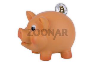 Sparschwein mit Bitcoin