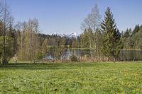 Buchner pond near Bad Toelz