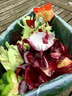 Frischer Biomüll mit Paprika, Kohl und roten Zwiebelschalen
