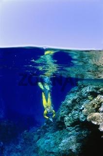 Tauchgang im Roten Meer