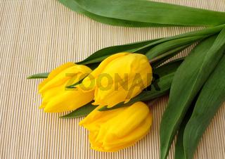 three yellow tulips over straw matt