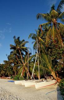Katamarane am Palmenstrand