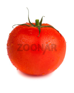 Ripe red tomato with water drops