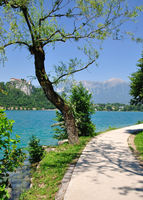 Promenade at Lake Bled,Slovenia