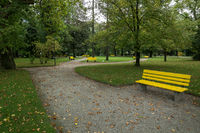 Park with yellow benches