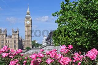 Blick von einem kleinen Park zum Big Ben in London