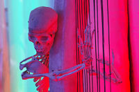 Skeleton as a musician for Halloween