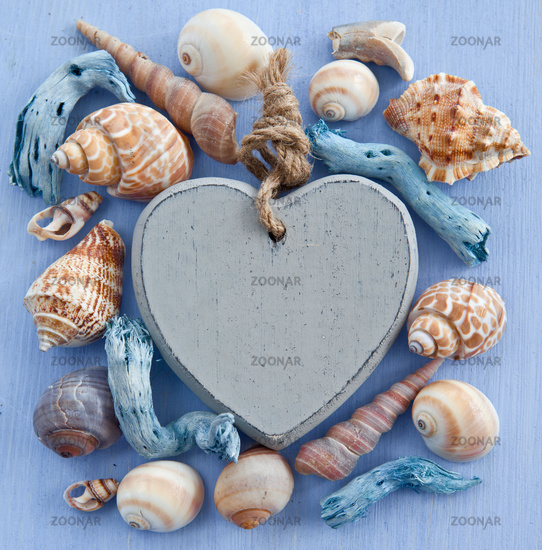 Background with sea shells