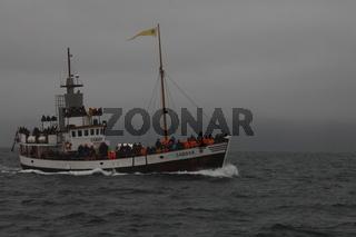 Whale-watching tourist boat on the Skjálfandi Bay near Húsavík
