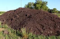 horticultural compost