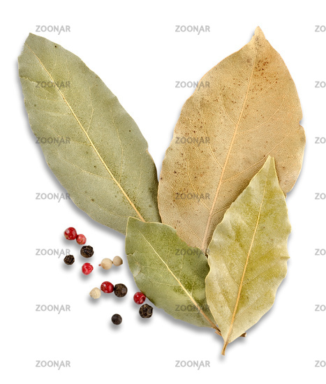 Bay leaves and spices