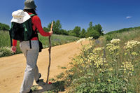 Spain: Pilgrim near San Juan de Ortega