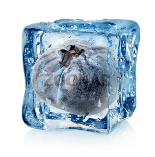 Blueberry in ice cube