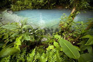 das blaue Wasser des Rio Celeste im Mationalpark Volcán Tenorio