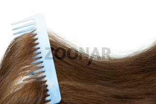 Hairbrush and long hair