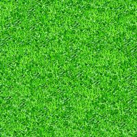 Seamlessly green grass texture background.