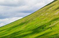 scotland diagonal green highlands